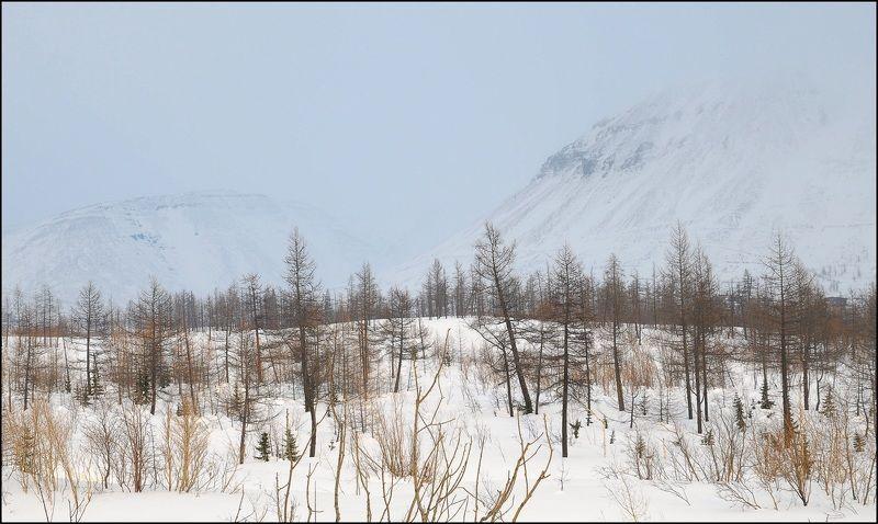 Таймыр.Апрель.Зима. t-10C Суботний деньphoto preview