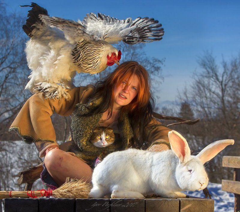 День белого  кроликаphoto preview