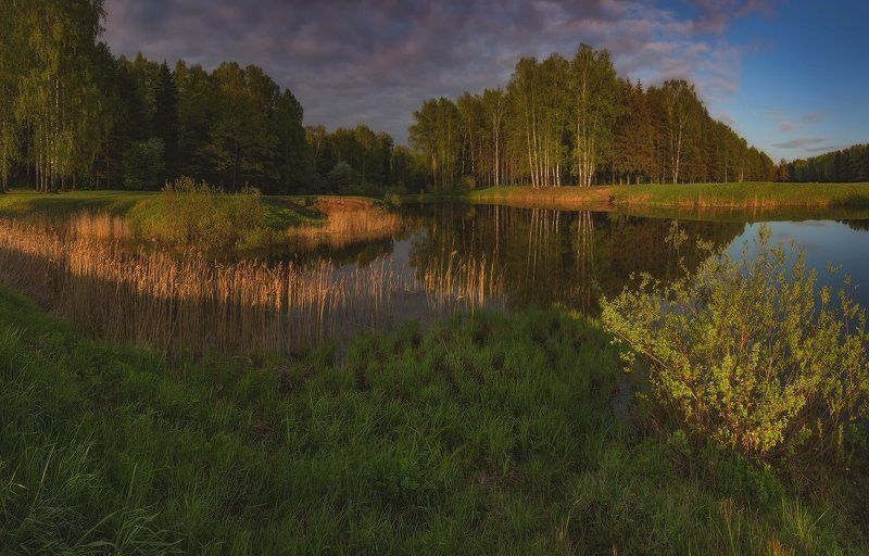 landscape, павловск, павловский, павловский парк, пейзаж, питер Мечты о мае. . .photo preview