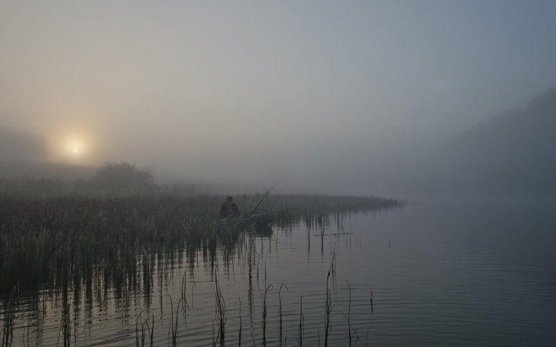 лето озеро новое утро туман рыбак Озеро надеждыphoto preview