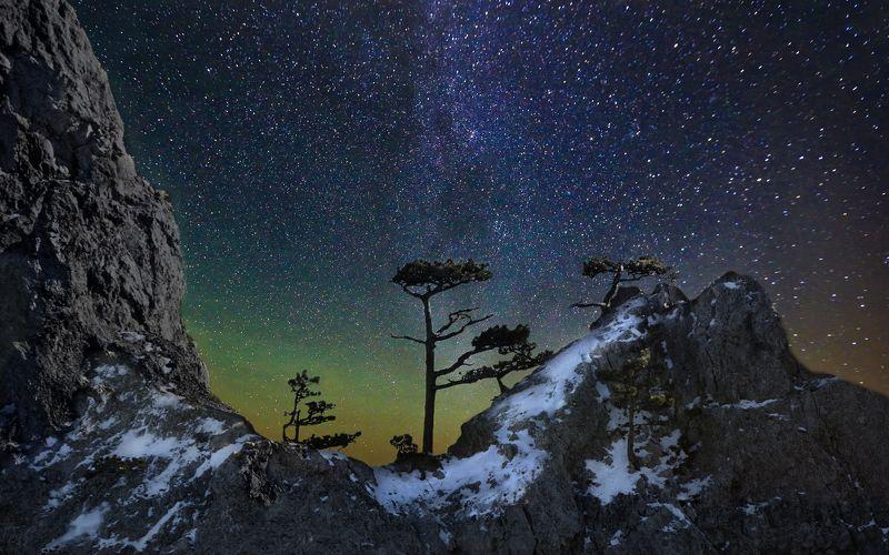 ночь,звезды,дерево,скала,снег,зима,крым,ай-петри,небо,природа,пейзаж,сосны,деревья,россия Звезды горы Ай-Петриphoto preview