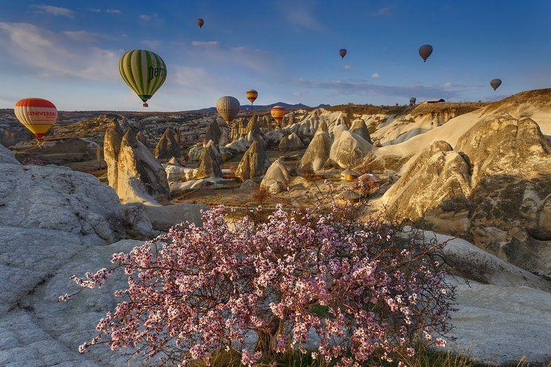 Spring spirit of Cappadociaphoto preview
