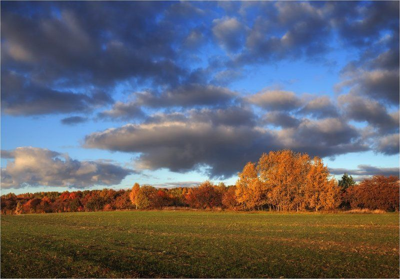 осень, небо, деревья, Пора осенняяphoto preview