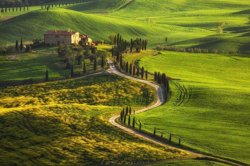 tuscany, toskania, toscany, italia, italy, morning, sunrise, fields, spring, light, gladiator, road Gladiator\'s roadphoto preview