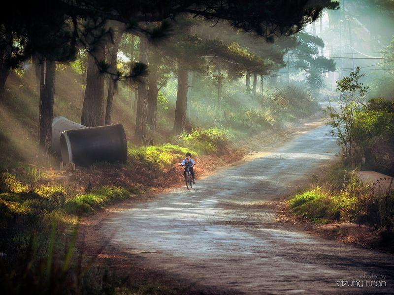 #little_boy, #sunny, #fog, #asleep, #dalat, #vietnam Sunny dayphoto preview