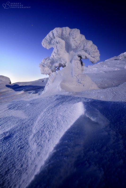 Обитатели горы Волосянаяphoto preview