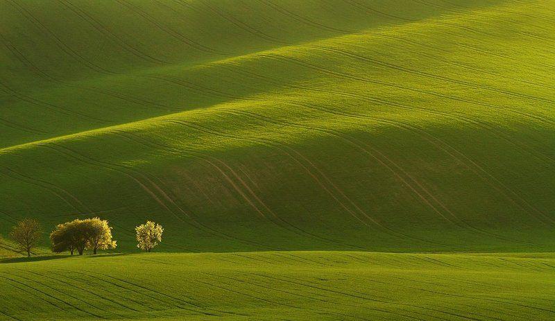Moravia Tuscany springtime Moravian tuscanyphoto preview