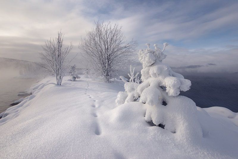 молочная Снежная НЁХphoto preview