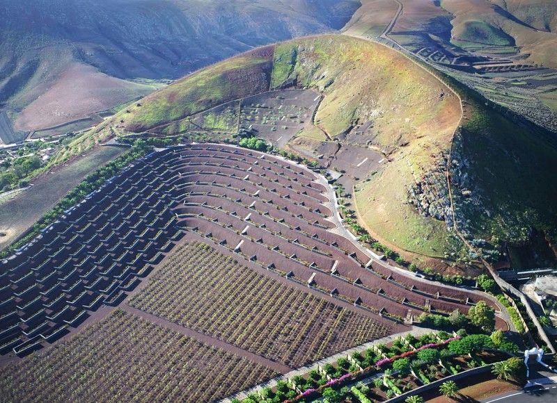 лансароте, вулкан, дрон, аэро, aerial, коптер Виноградники в жерле вулканаphoto preview