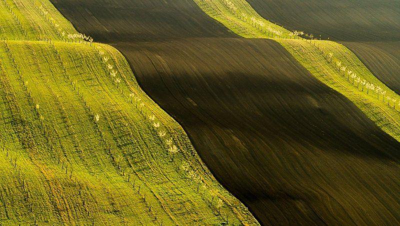 Moravian slidesphoto preview