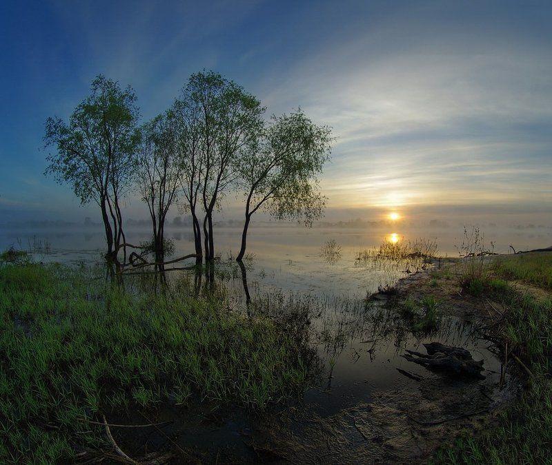 spring, belarus,sun, water, landscape, nature, morning, fog, весна, солнце, пейзаж, природа, утро, рассвет, туман Весенний рассветphoto preview