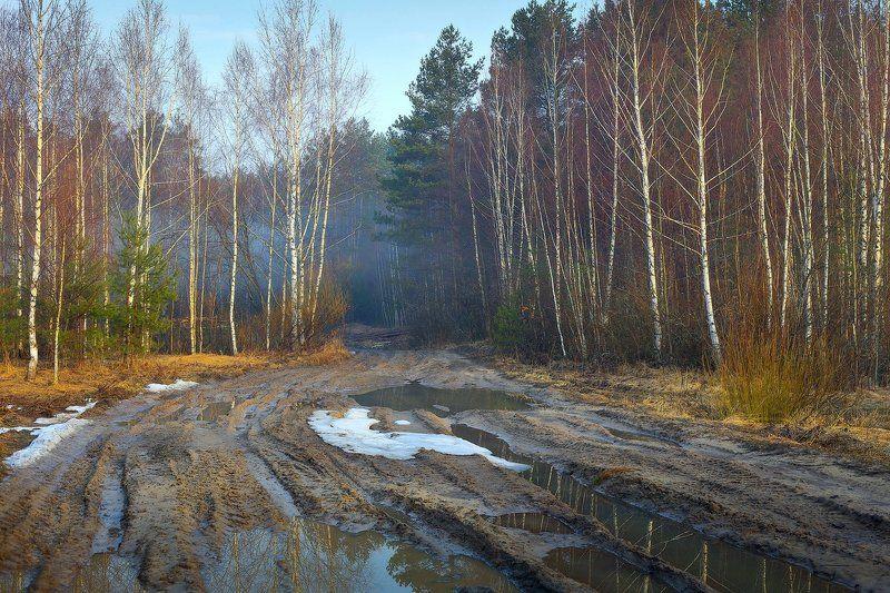 дорога, лес, снег, весна, апрель Чем дальше в лес, тем больше снегаphoto preview