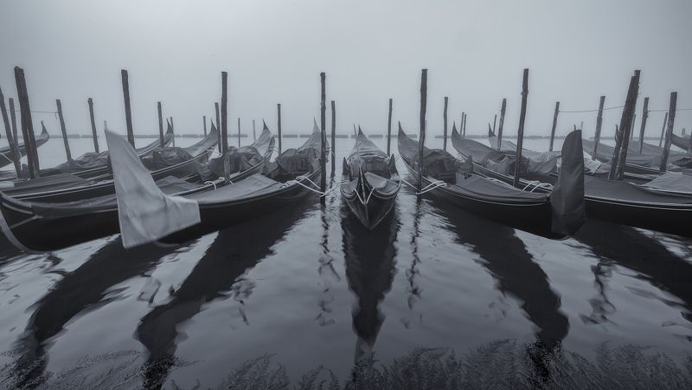 венеция, италия, venice, italy, утро, путешествие Утренняя симфония.photo preview