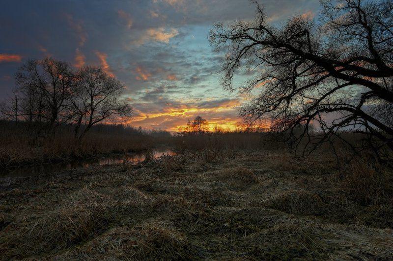 весна,небо,вечер,закат photo preview