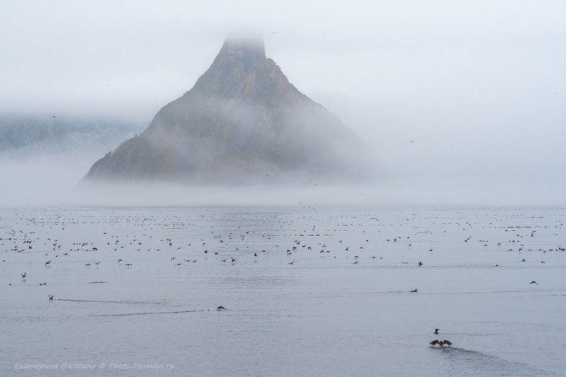 Призрачный островphoto preview