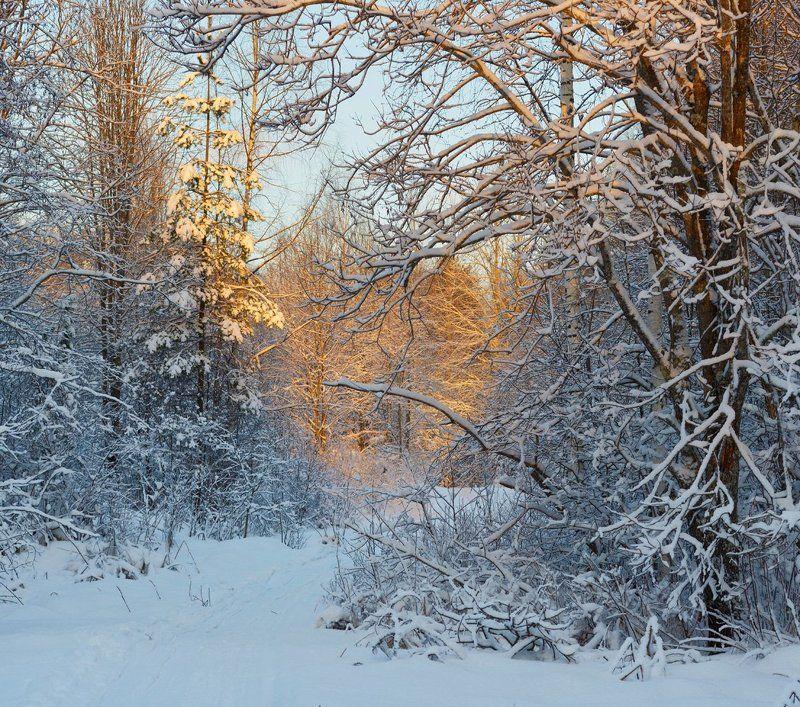 До свиданья, Зима!photo preview