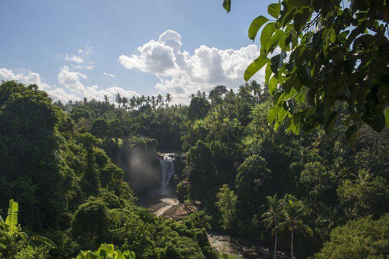 Тропический водопад photo preview