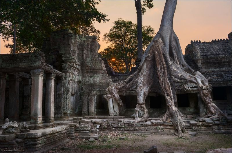 Preah Khan, Cambodiaphoto preview