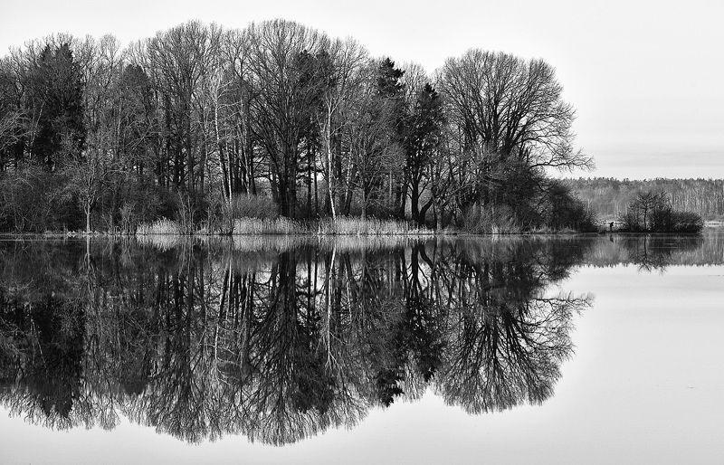 восход, озеро, монохром Про симметриюphoto preview