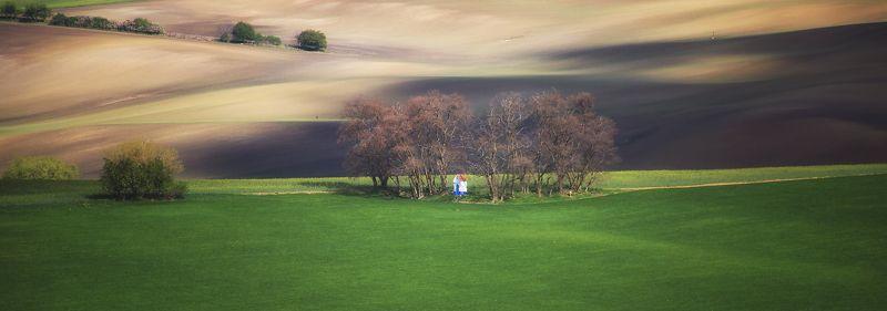 поле волны весна чехия Каплица Мистринphoto preview