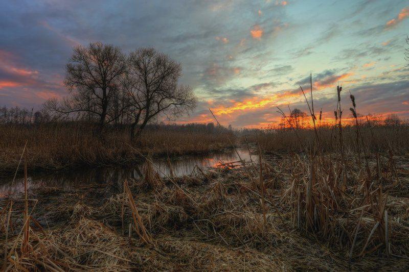 весна,небо,вечер,закат Мартовский вечерокphoto preview