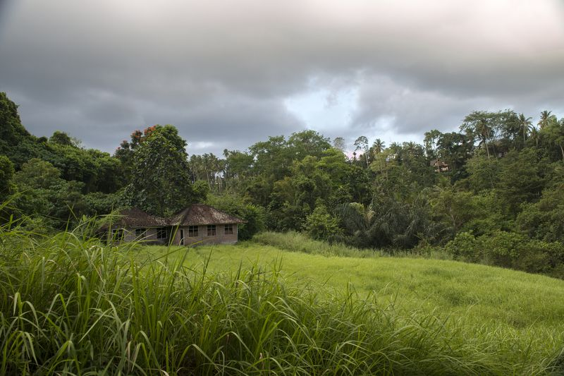 Тропики Балиphoto preview