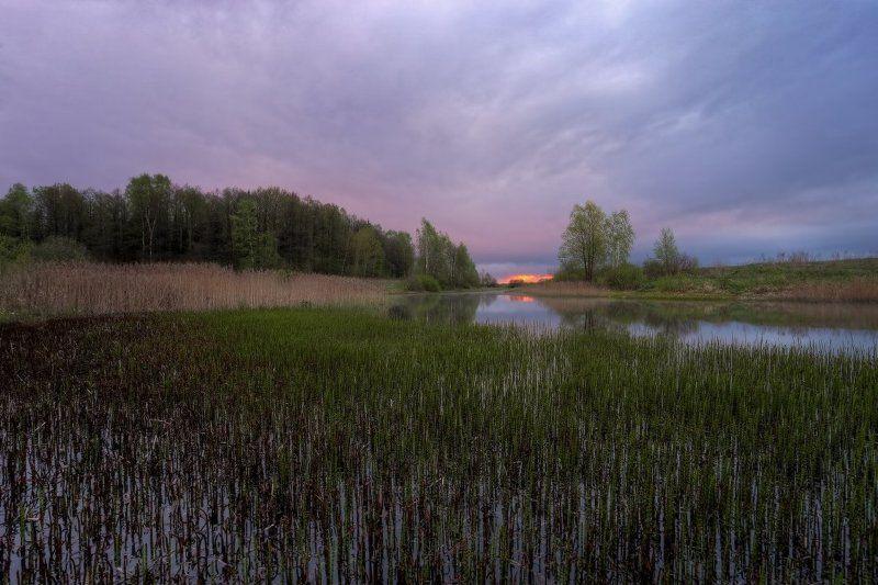 весна,небо photo preview