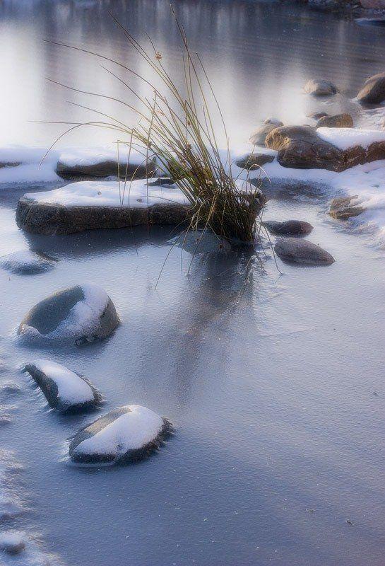 Ледяная нежность.photo preview