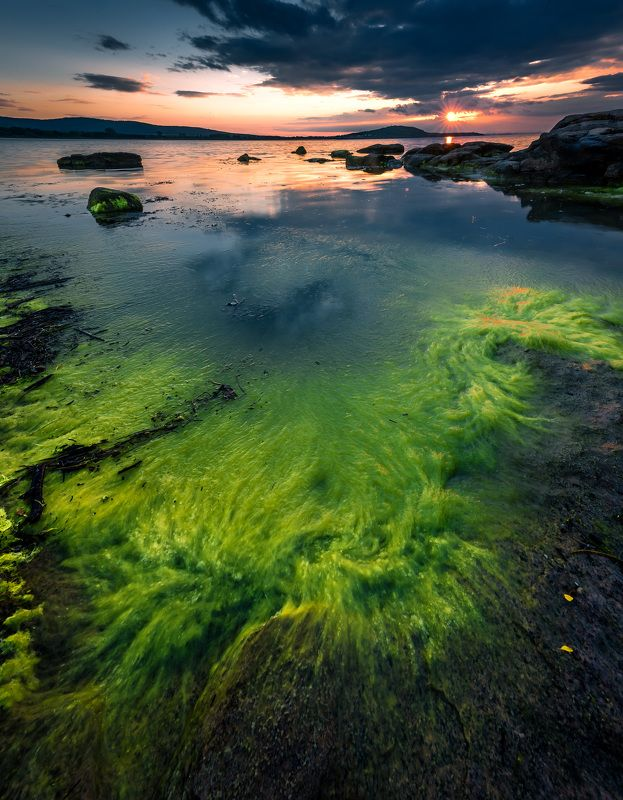 sea, sunset, spring, nature, landscape, sun, green, water Sea springphoto preview