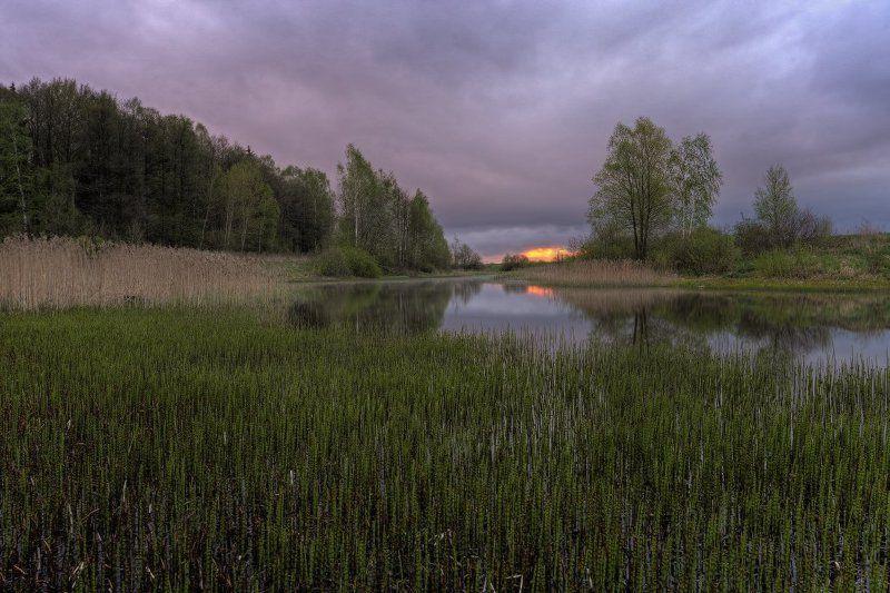 рассвет,утро Холодное майское утроphoto preview
