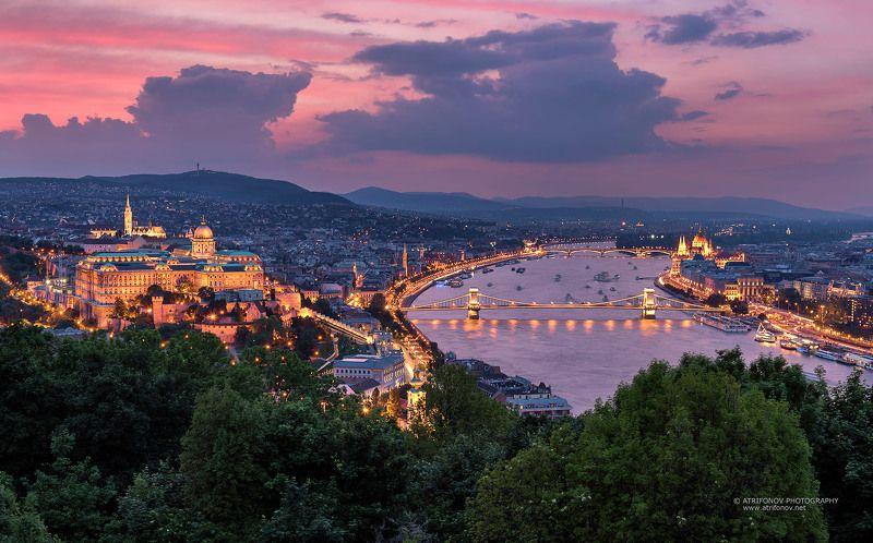 budapest, hungary, buda castle, szechenyi bridge, parliament, sunset, cityscape, city lights Budapestphoto preview