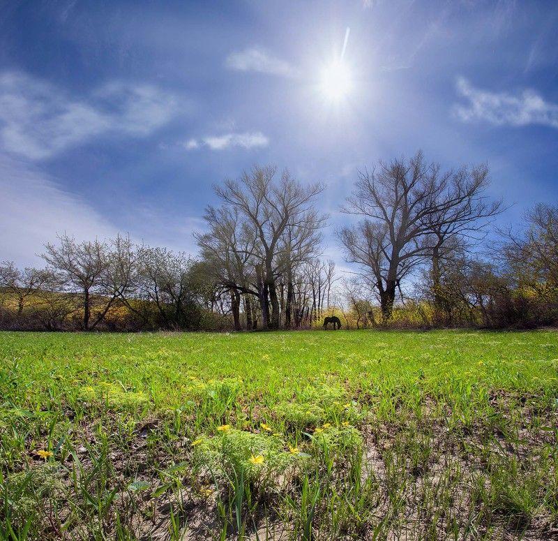 орск оренбургская обл. качурин новотроицк южный урал Весна наступаетphoto preview
