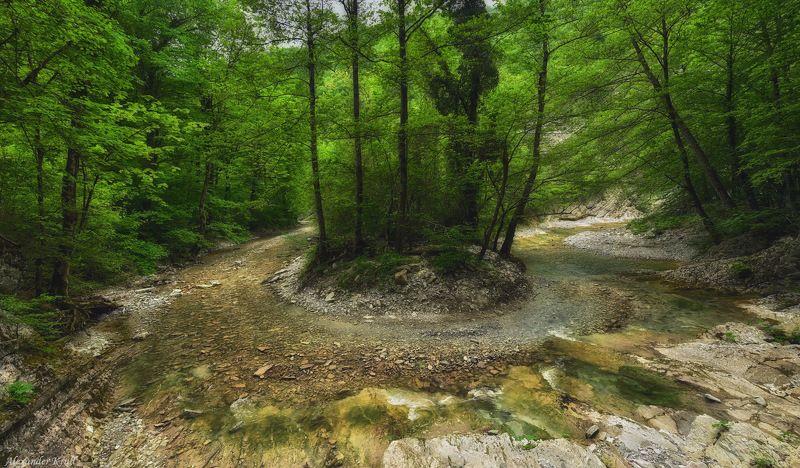 На лесной излучине...photo preview