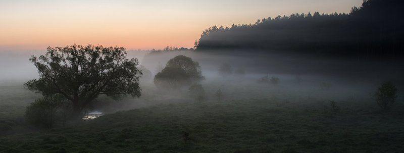 Май, утро, туман...photo preview