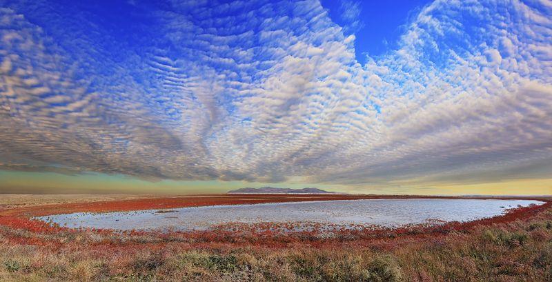 озеро,соленое,осока,красный,трава,сухой,гора,небо,голубой,облака,природа,растения,высококучевые,крым,россия,опук,пейзаж,лето,холм,горизонт,вода,отражение Безымянное озеро военного полигонаphoto preview