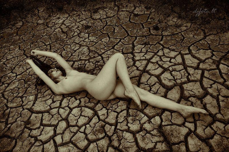 Drought / Засухаphoto preview
