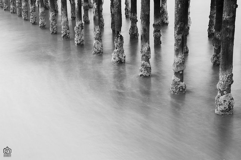 longexposure,fineart,sea,nature,rock,water,calm,landscape,iran,dream,fog,abstract,canon,canon80d,canonphotography,blackandwhite,black,white,mohammadhemmaty,concept,pier,light,contrast,composition,tree,columns,pier Old Columns Of Pierphoto preview