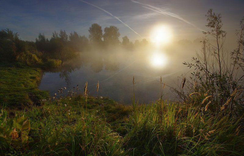 утро, рассвет, свет, осень, вода, лес, озеро, солнце В рассветной тишинеphoto preview