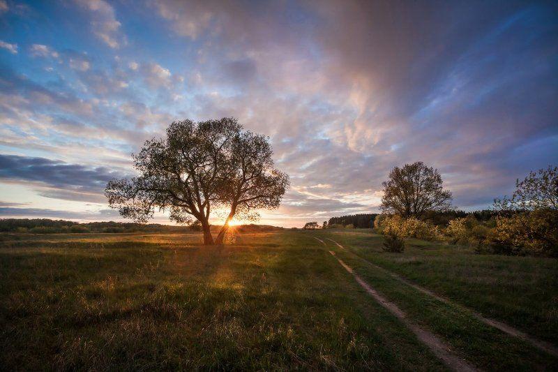 закат, весна Вечерphoto preview