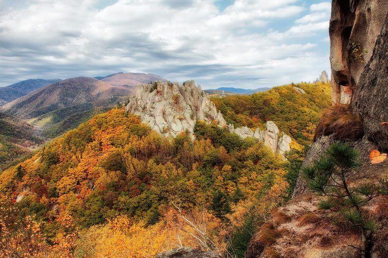 чистоводное, тайга, осень, скалы, приморский край это Приморье!photo preview