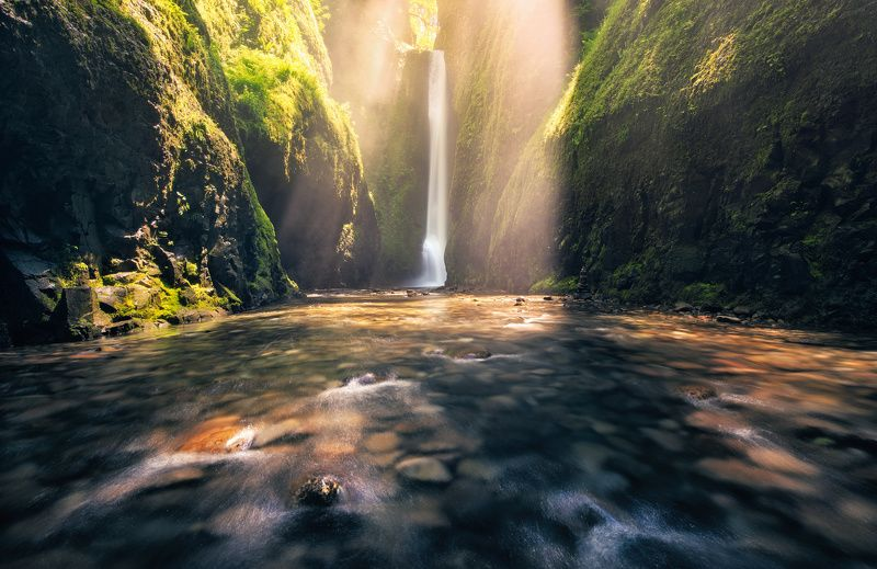 oregon Shower of Lightphoto preview