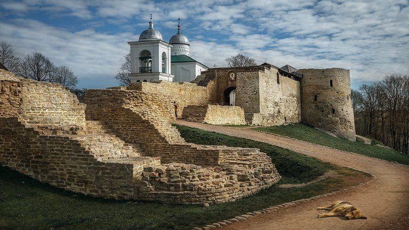 изборск,крепость,старина,развалины,история Изборскphoto preview