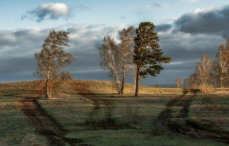 Сильный ветер.photo preview