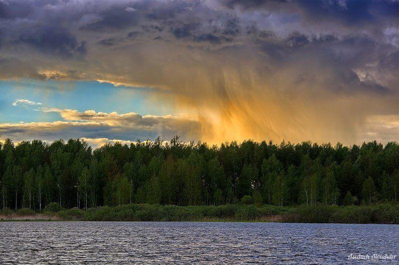 озеро, вечер, вода, дождь, туча, облака, небо, лето Золотой дождьphoto preview