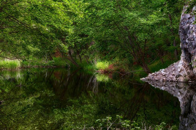 ручей, лето, скала, отражение, приморский край летний ручейphoto preview