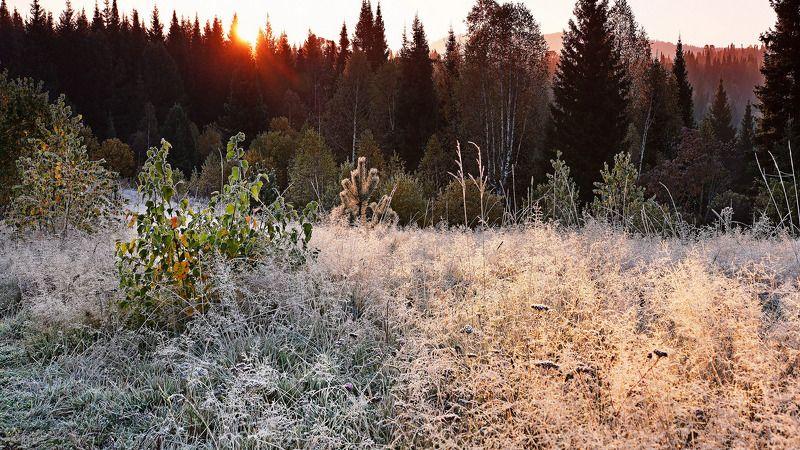 пейзаж, восход, осень Про утро! photo preview