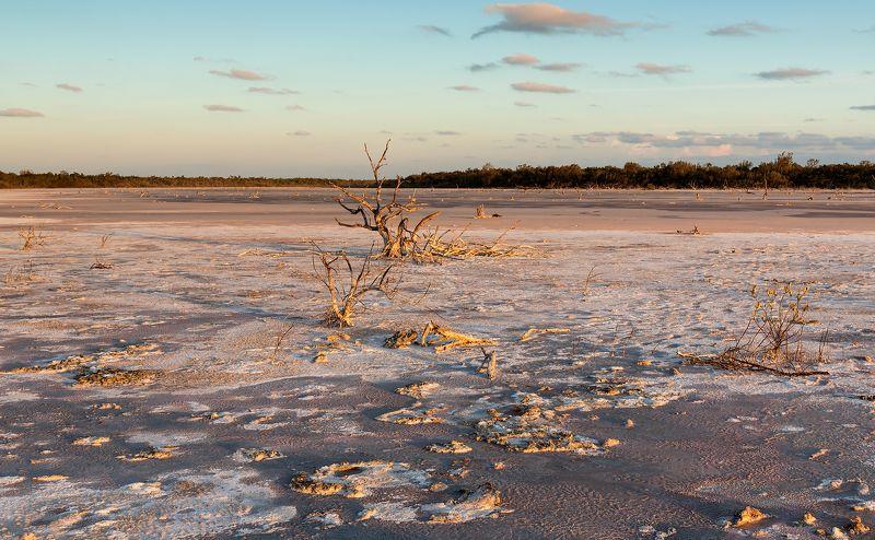 lagoon, salt, trees, sunset, cuba, лагуна, соль, деревья, закат, куба Salt lagoonphoto preview