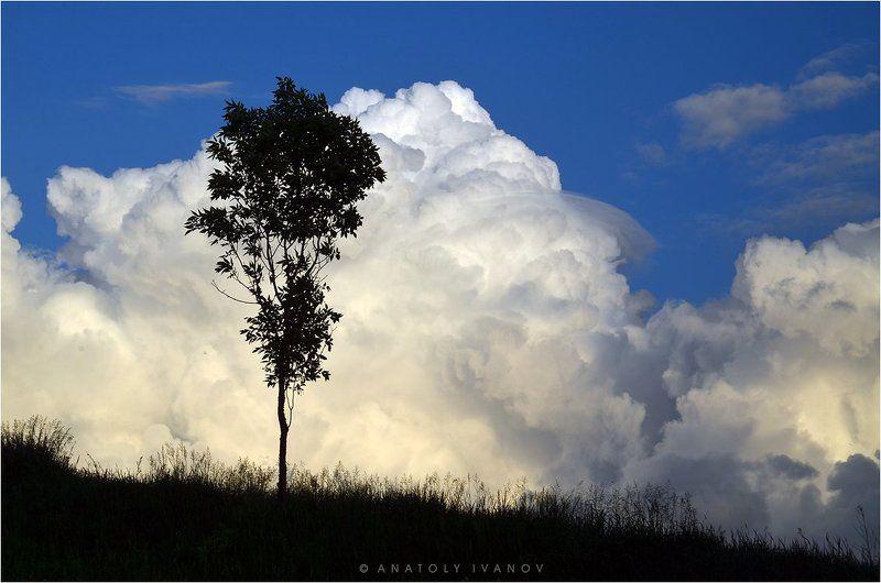 На фоне облаковphoto preview