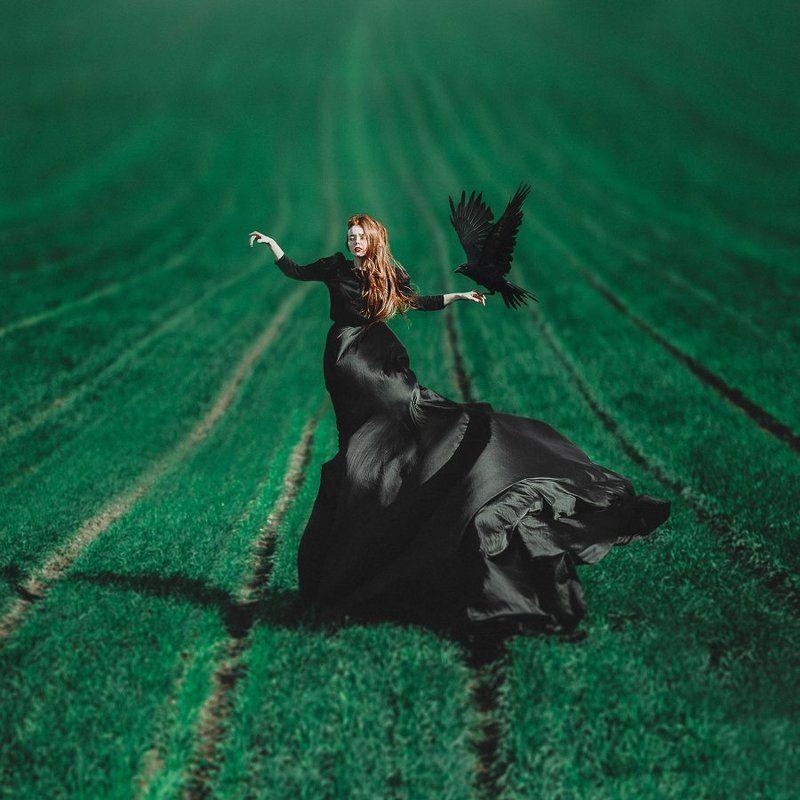 рыжая, девушка, черное платье, ворон, зеленое, поле, портрет, girl, crow, field, green, red hair, emotive, black dress Bella with Crowphoto preview