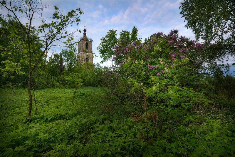 пейзаж, пейзажная съемка, утро, туман, храм, июнь, июньское утро, свежесть, молодая зелень, никон, landscape, may, fog, morning, church ***photo preview